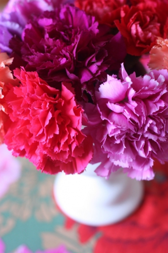 2flowergirls_carnation_colourful.jpg